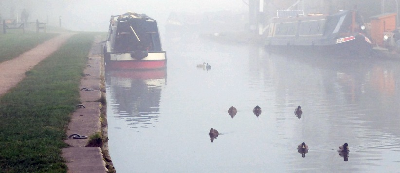 ducks 7boat
