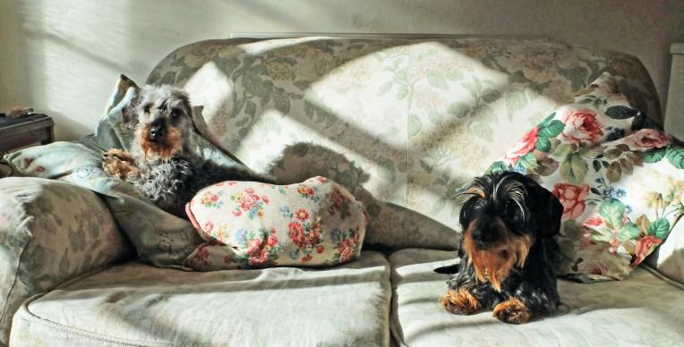 sofa arch&alf